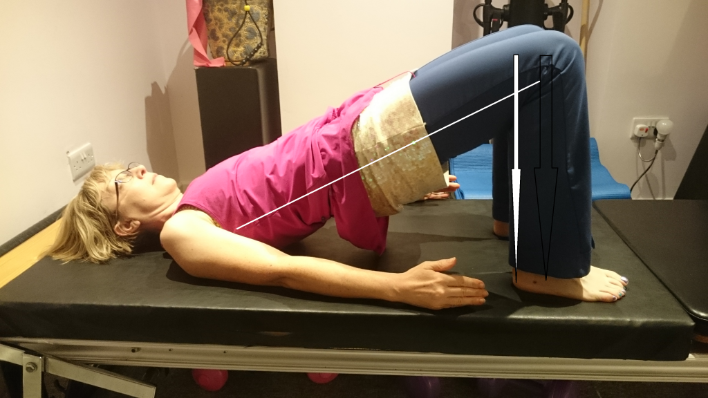 Pilates Glute bridge annotated to show the lines of force transmission