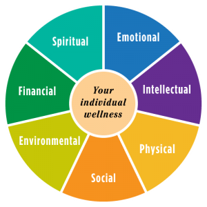 Wellness Wheel. 7 elements - spiritual, emotional, intellectual, physical, social , environmental, financial
